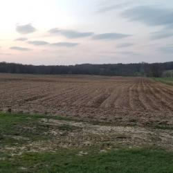 Farm fields current day