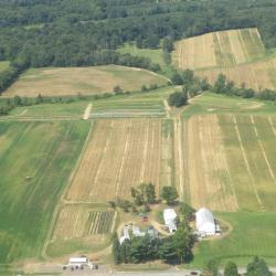 Seiberling Farm aerial view